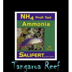 Test de Amonia (NH4)