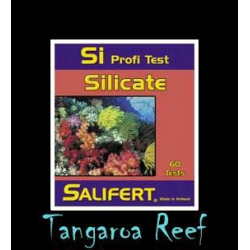 Test de Silicatos (Si)