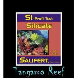 Test de Silicatos (Si)