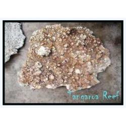 Roca forma PLANA