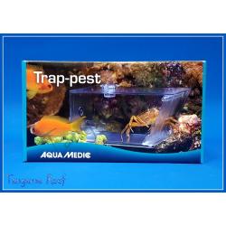 Trap-pest