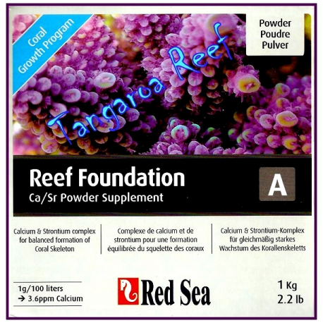 Reef Foundation A