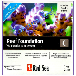 Reef Foundation C