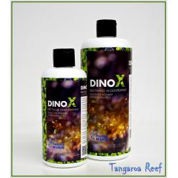Dino X