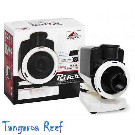 RISER RX6600