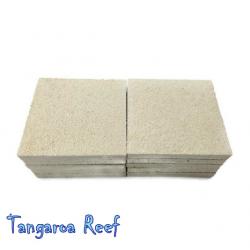 Agrocrete Coral Frag Tiles 2¨, 50x50 mm.