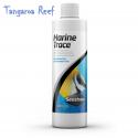Marine Trace