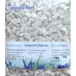 Aragonite Reactor