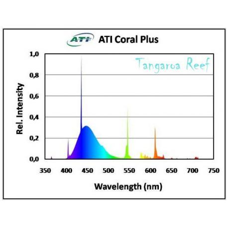 ATI Coral Plus 24w