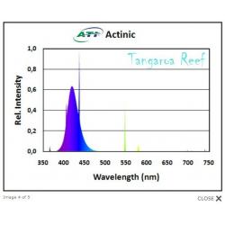 ATi Actinic 80w