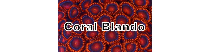 Coral Blando