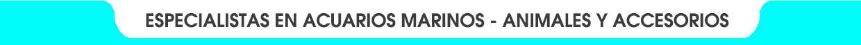 Tangaroa Reef la mejor atención para tu acuario
